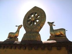 Мир дхармы