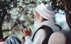 Йога суфиев